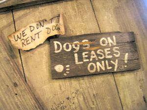 pet-etiquette-rv-tips-1