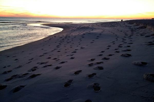 5 RV Beach Camping Destinations: Fall Out of Your RV Onto the Sand