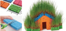 Fun DIY Craft Idea Using Sponges And Grass Seed