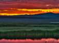 10 Photos By The US Department Of The Interior That Assure Us Spring Has Come