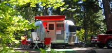 A Couple's Airstream Bambi Framed Beautifully In The Lush Pacific Northwest