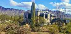 Discover A Desert Wonderland At Gilbert Ray Campground In Tucson, Arizona