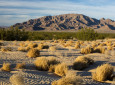 California RVers: 3 New National Monuments Expand Recreation Options