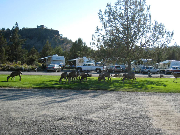 15 RV Parks To Add To Your Bucket List This Spring