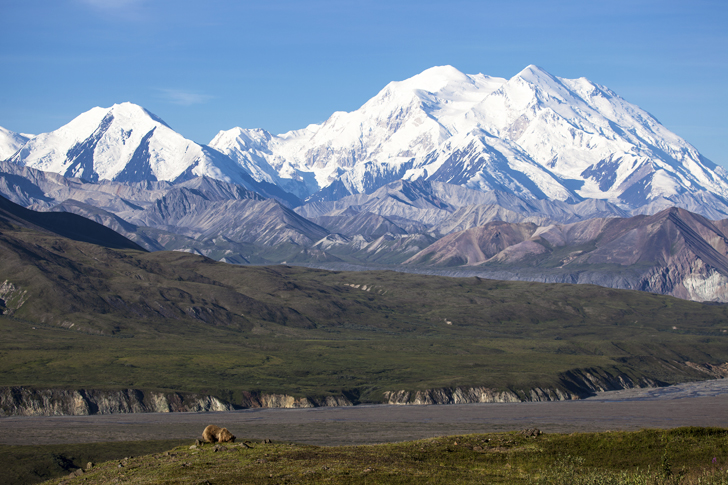 Top 10 Reasons To Visit Denali National Park In Alaska